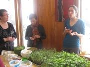 Dégustation autour des pousses et germinations