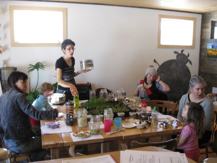 Atelier-causerie en famille Germinations et pousses - le germoir